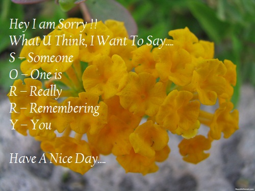 i am sorry images facebook good morning