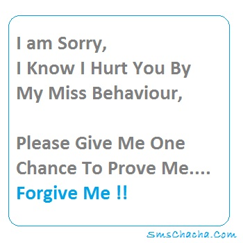 Message to say sorry to your boyfriend