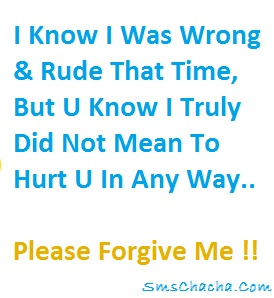 sorry sms message for hurting you