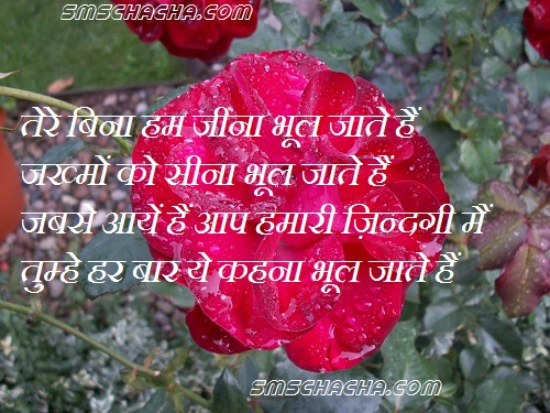 Love Quotes With Pictures For Facebook In Hindi : The Romantic Shayari Quote On Love For Facebook .You Can Send This In ...