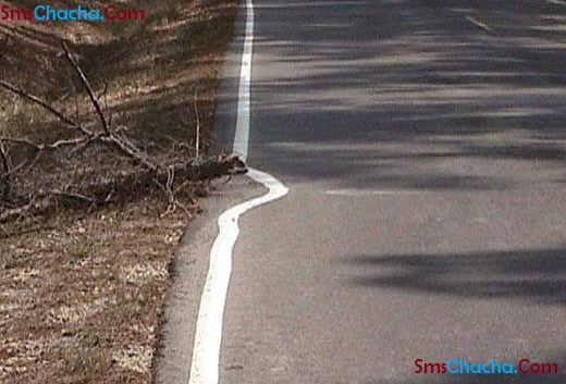 Funny Pics Indian Roads
