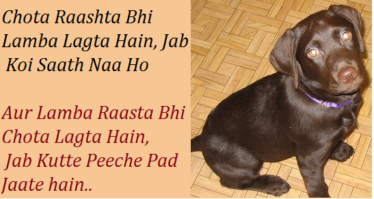 Funny Sayings Life Hindi