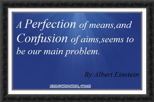 The great saying by albert einstein regarding perfection aims and