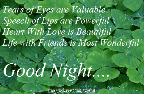 Good Night Friendship Sms