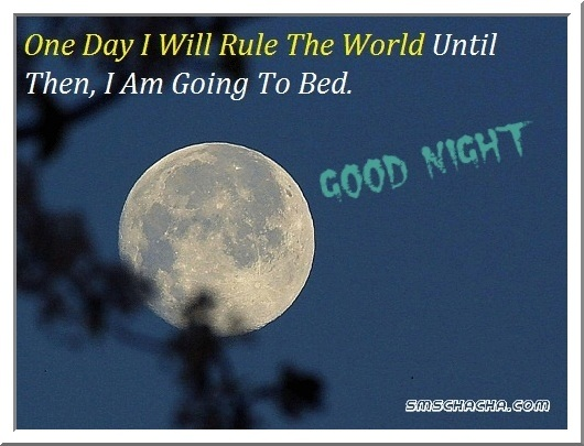 funny goodnight quotes picture facebook status