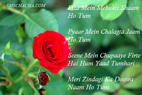 Lovely Good Morning Sms In Hindi