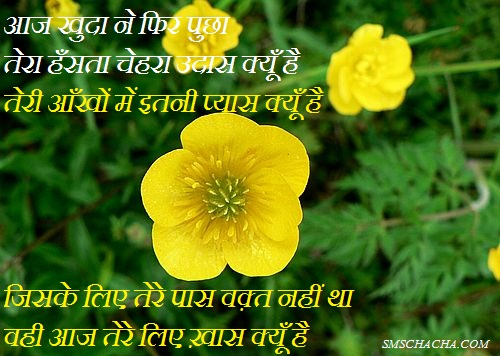 Hindi Shayari Of Life