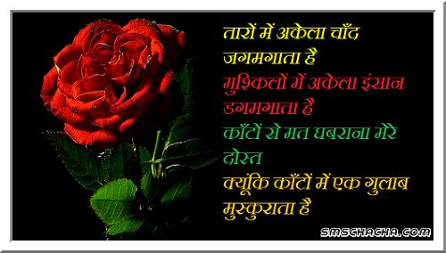 Motivational Shayari Sms With Wallpaper