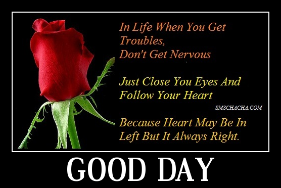 Image result for Good day