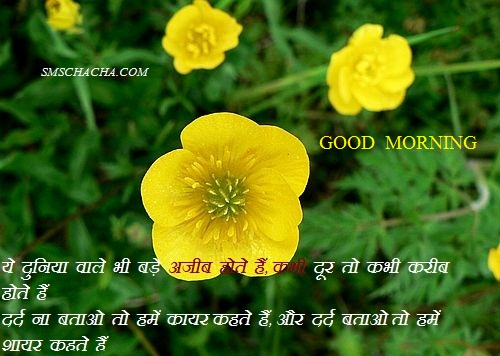 Good Morning Wishes Shayari Sms