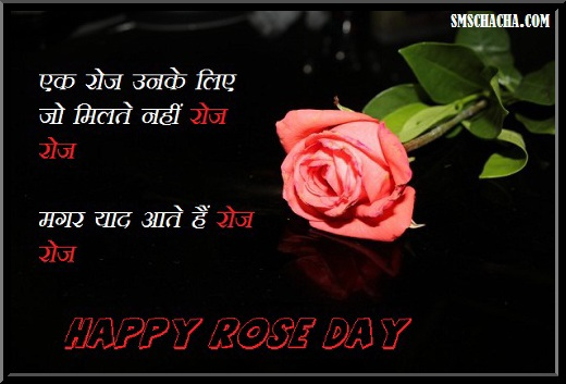 Rose Day Picture Sms Hindi Picture Sms Status Whatsapp Facebook