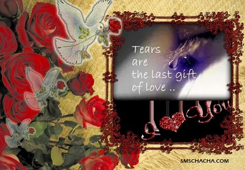 True Love Wallpaper Sms